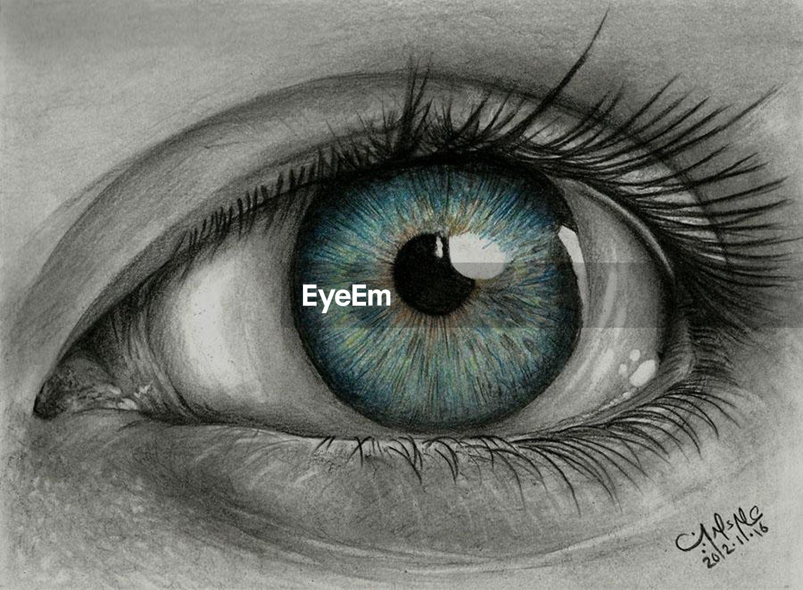 human eye, eyelash, eyesight, sensory perception, close-up, looking at camera, portrait, iris - eye, eyeball, part of, extreme close-up, indoors, full frame, human skin, vision, unrecognizable person, person