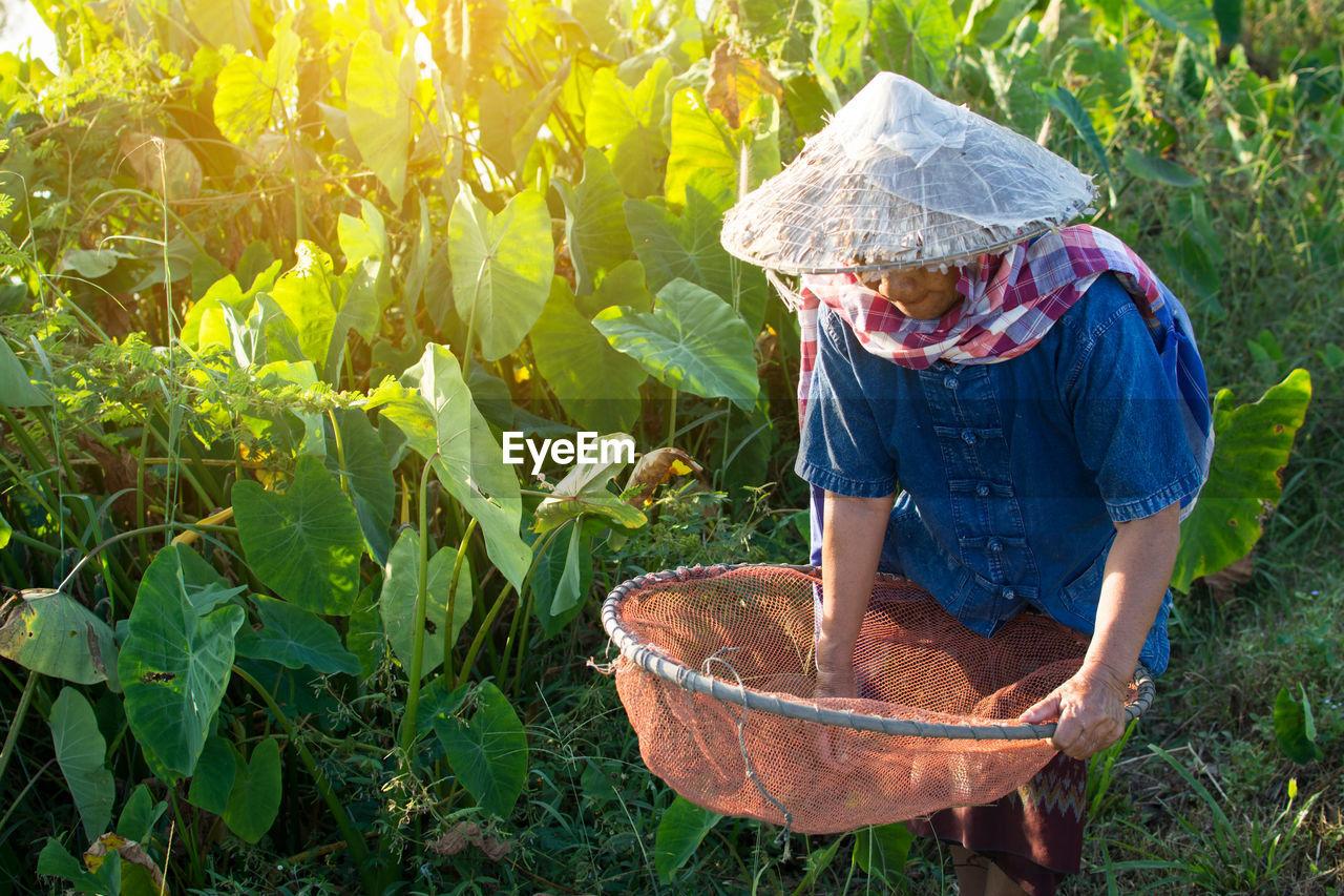 Senior Woman Working In Farm