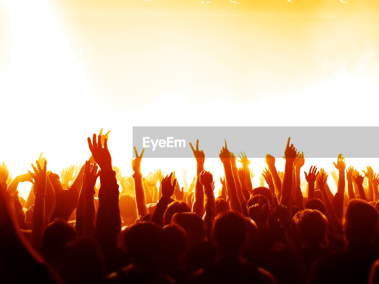 Crowd Gesturing At Music Concert