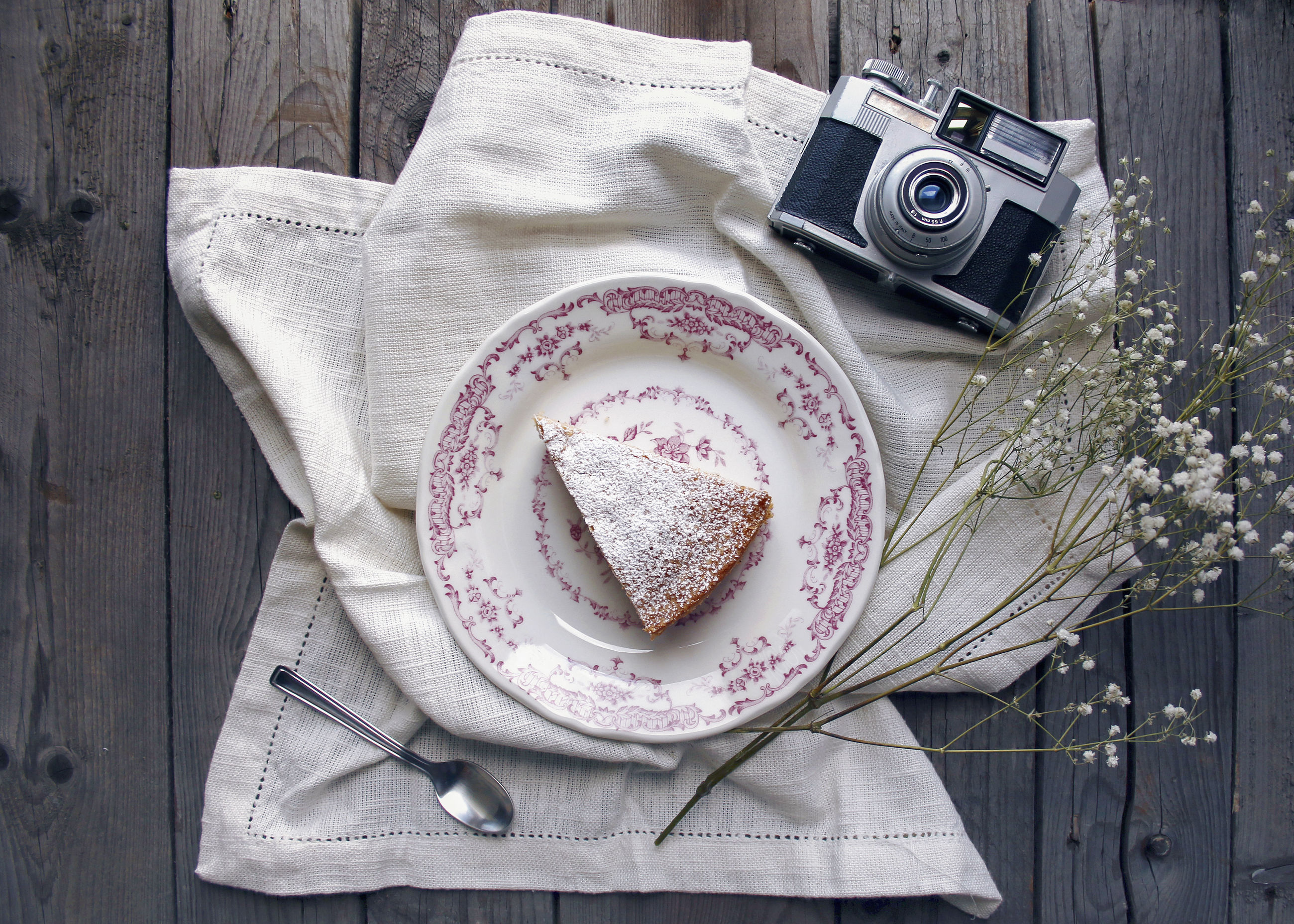 Directly above shot of cake slice with camera and plant on table