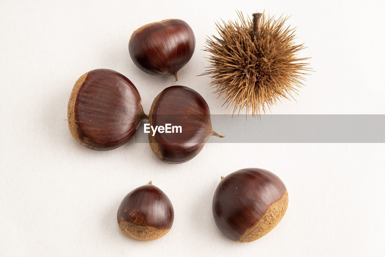 still life, studio shot, food and drink, white background, food, indoors, no people, freshness, chestnut - food, close-up, wellbeing, nut - food, brown, healthy eating, nut, chestnut, high angle view, group of objects, directly above, cut out