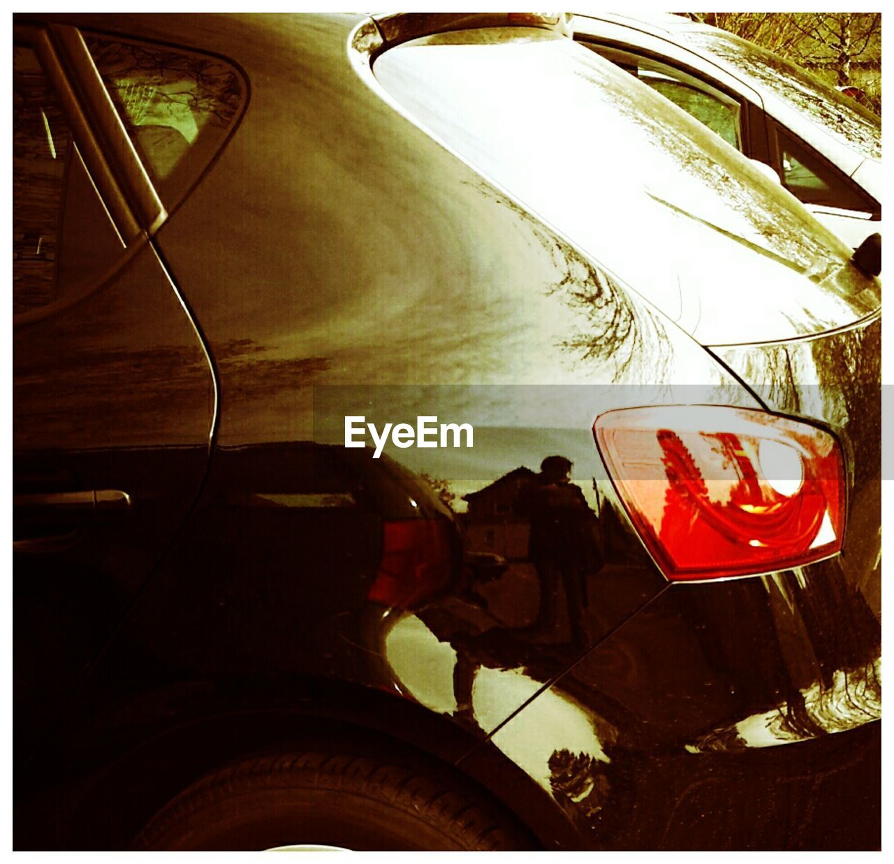 vehicle interior, transportation, no people, day, close-up, indoors, tree, sky