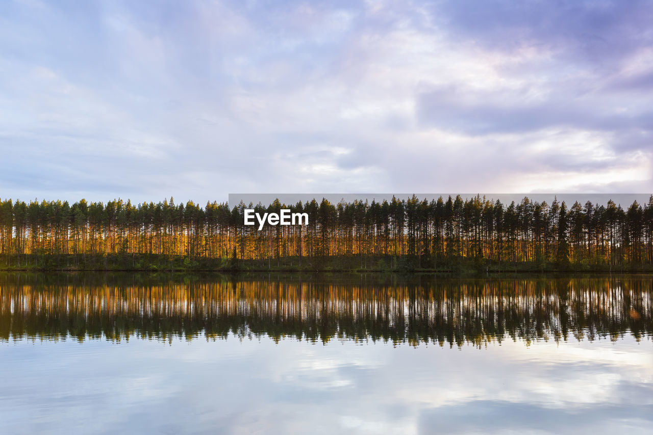 reflection, cloud - sky, water, sky, tranquility, tree, beauty in nature, lake, waterfront, scenics - nature, tranquil scene, no people, plant, nature, non-urban scene, day, idyllic, symmetry, outdoors, reflection lake