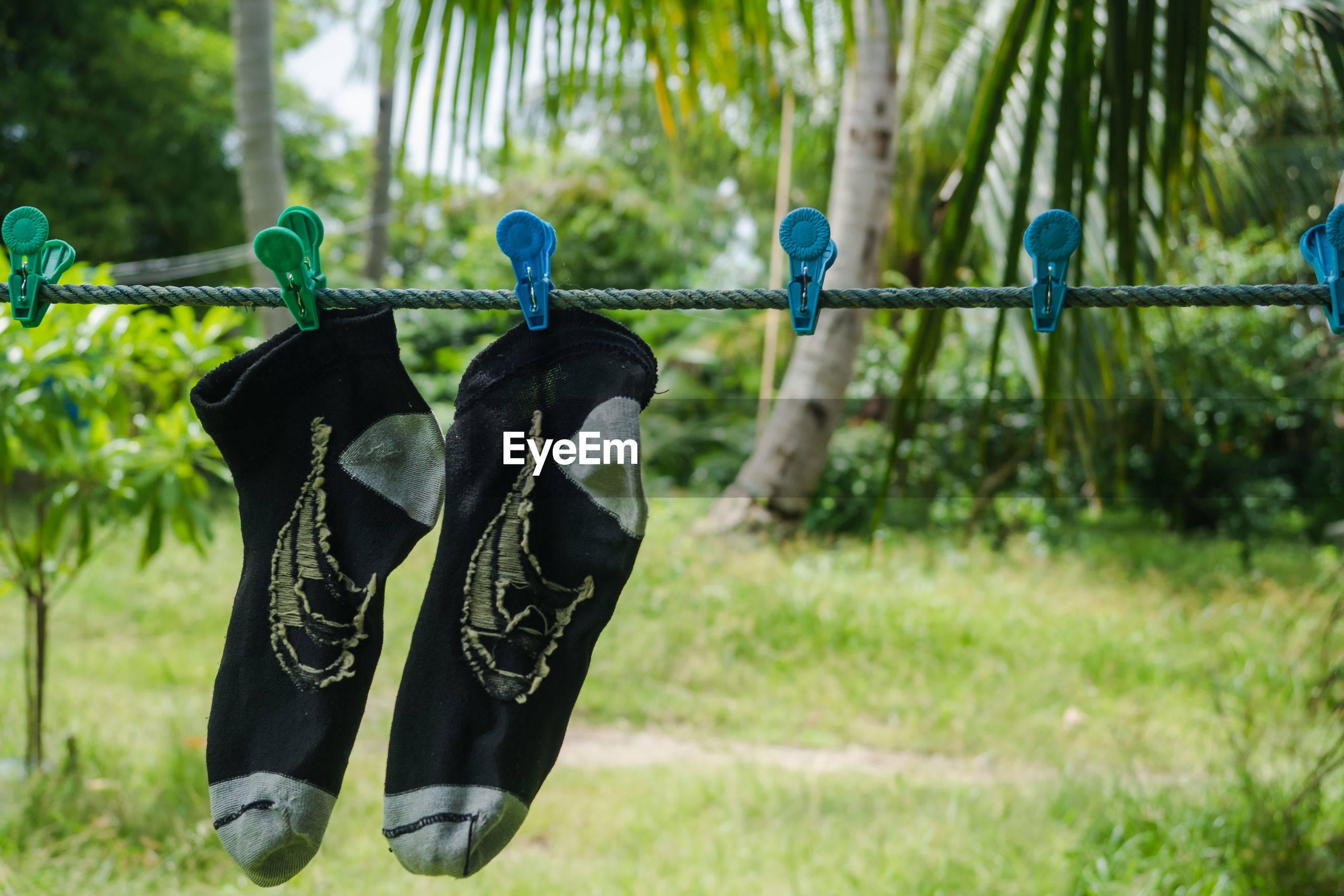 CLOSE-UP OF SHOES HANGING ON PLANT OUTDOORS