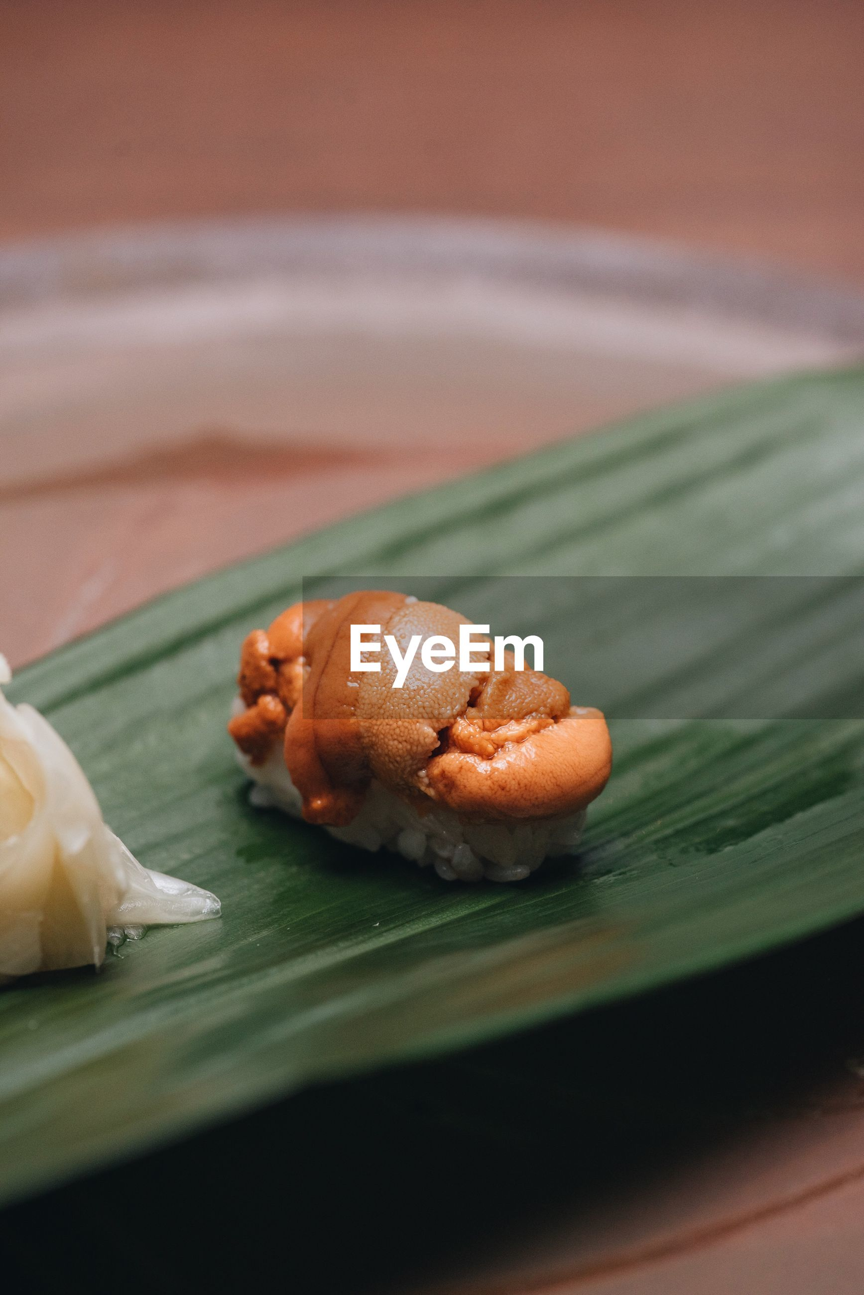 Close-up of sushi in leaf