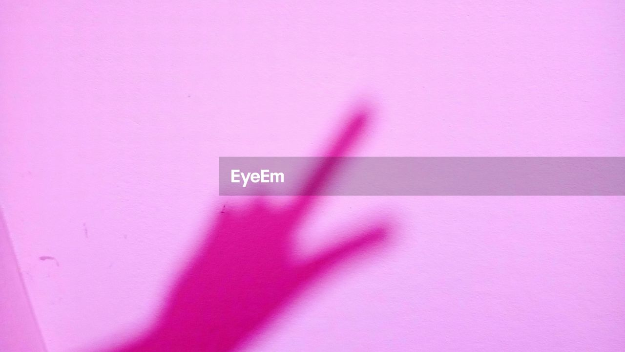 pink color, pink, purple, no people, pink background, arts culture and entertainment, backgrounds, close-up, indoors, day