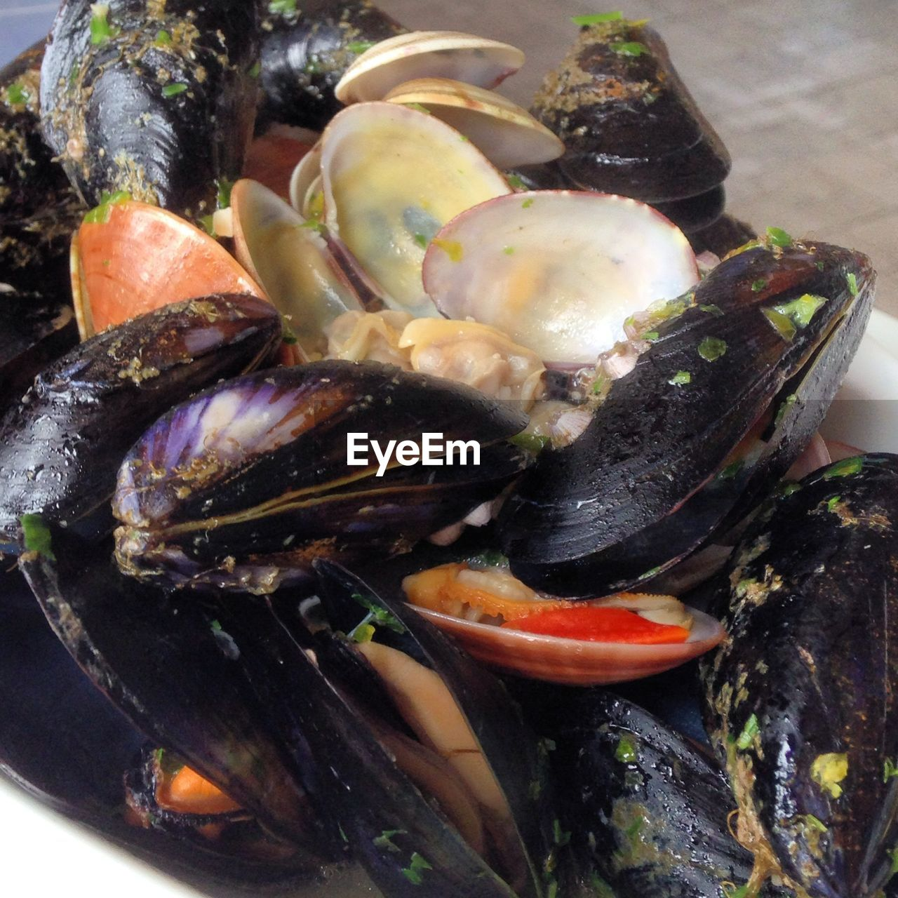 seafood, mussel, food and drink, food, no people, freshness, lobster, healthy eating, high angle view, prawn, close-up, ready-to-eat, indoors, crustacean, day