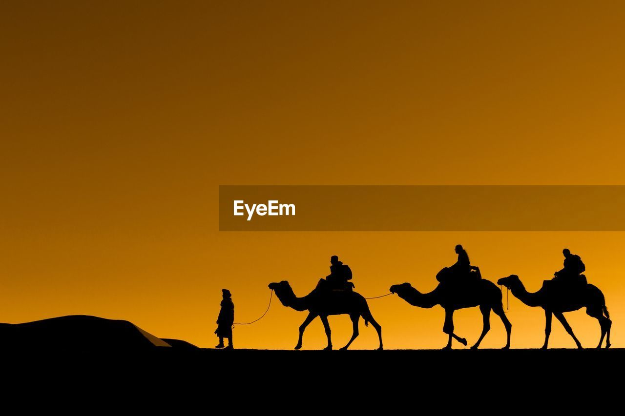 sky, silhouette, sunset, orange color, copy space, camel, mammal, domestic animals, group of animals, group of people, clear sky, land, beauty in nature, nature, men, domestic, desert, scenics - nature, outdoors, riding