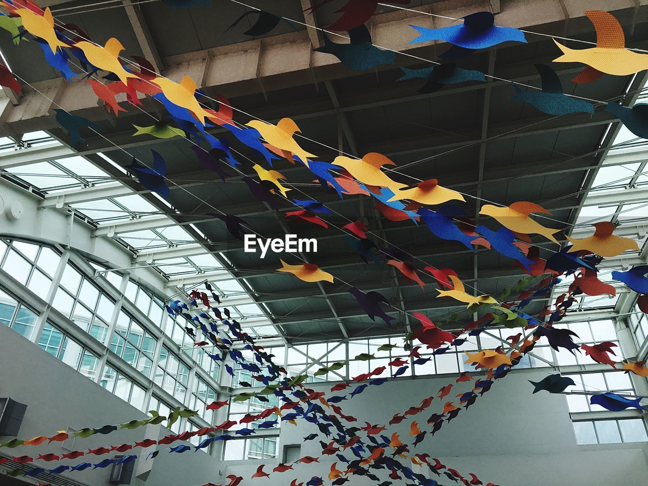 hanging, low angle view, multi colored, built structure, architecture, day, building exterior, indoors, bunting, no people, close-up
