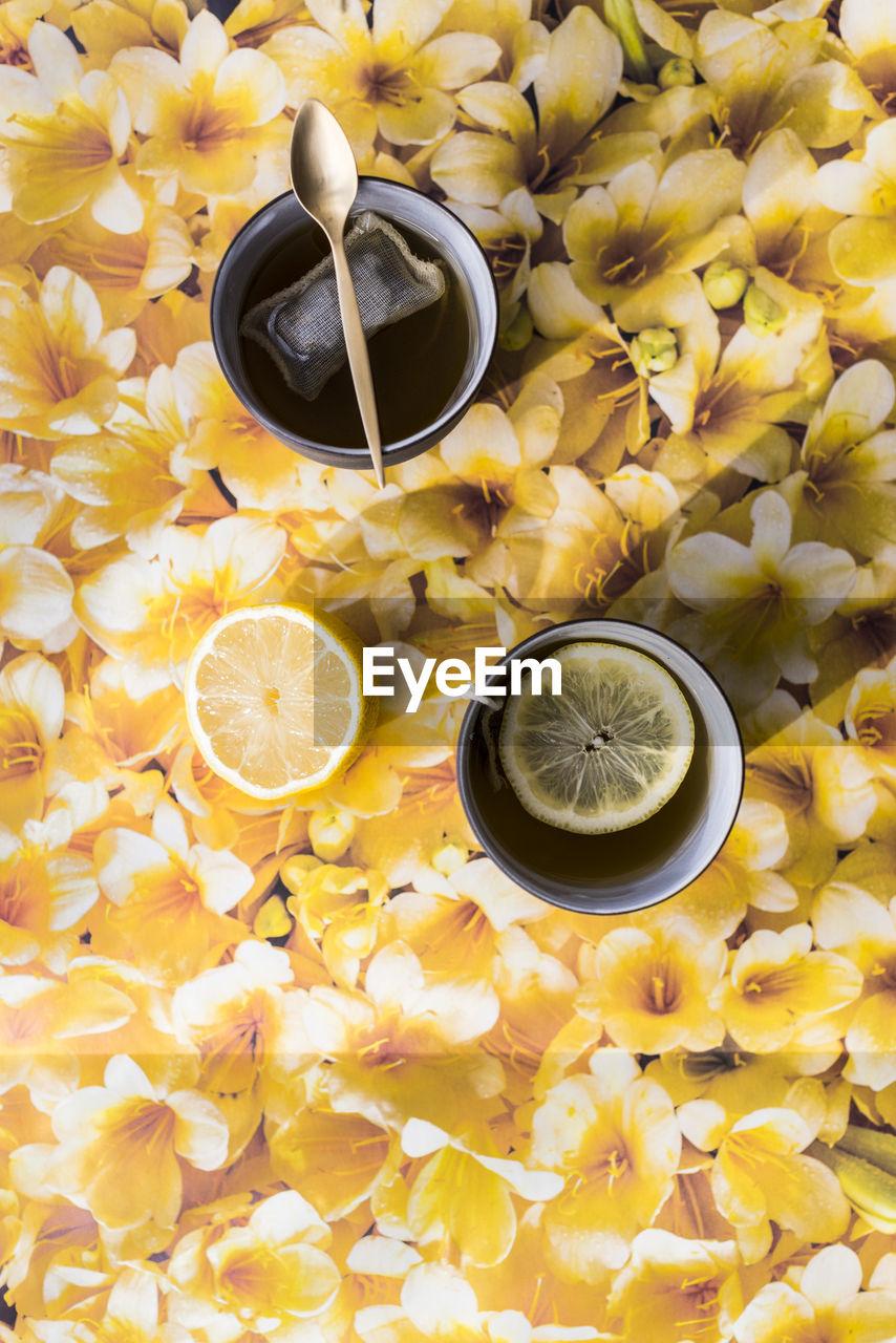 Teabag Infused In Making Herbal Tea On Floral Background