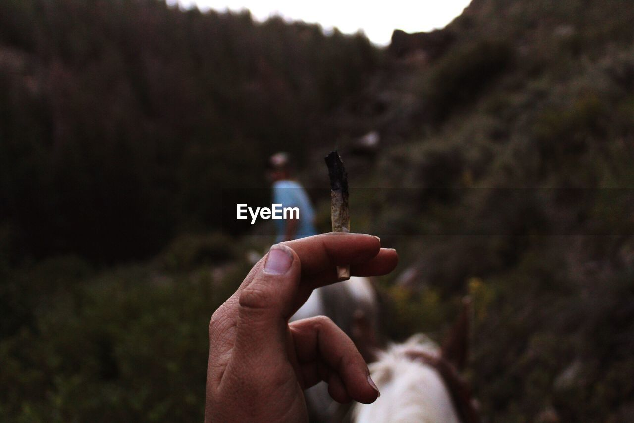 Cropped hand holding burnt cigarette
