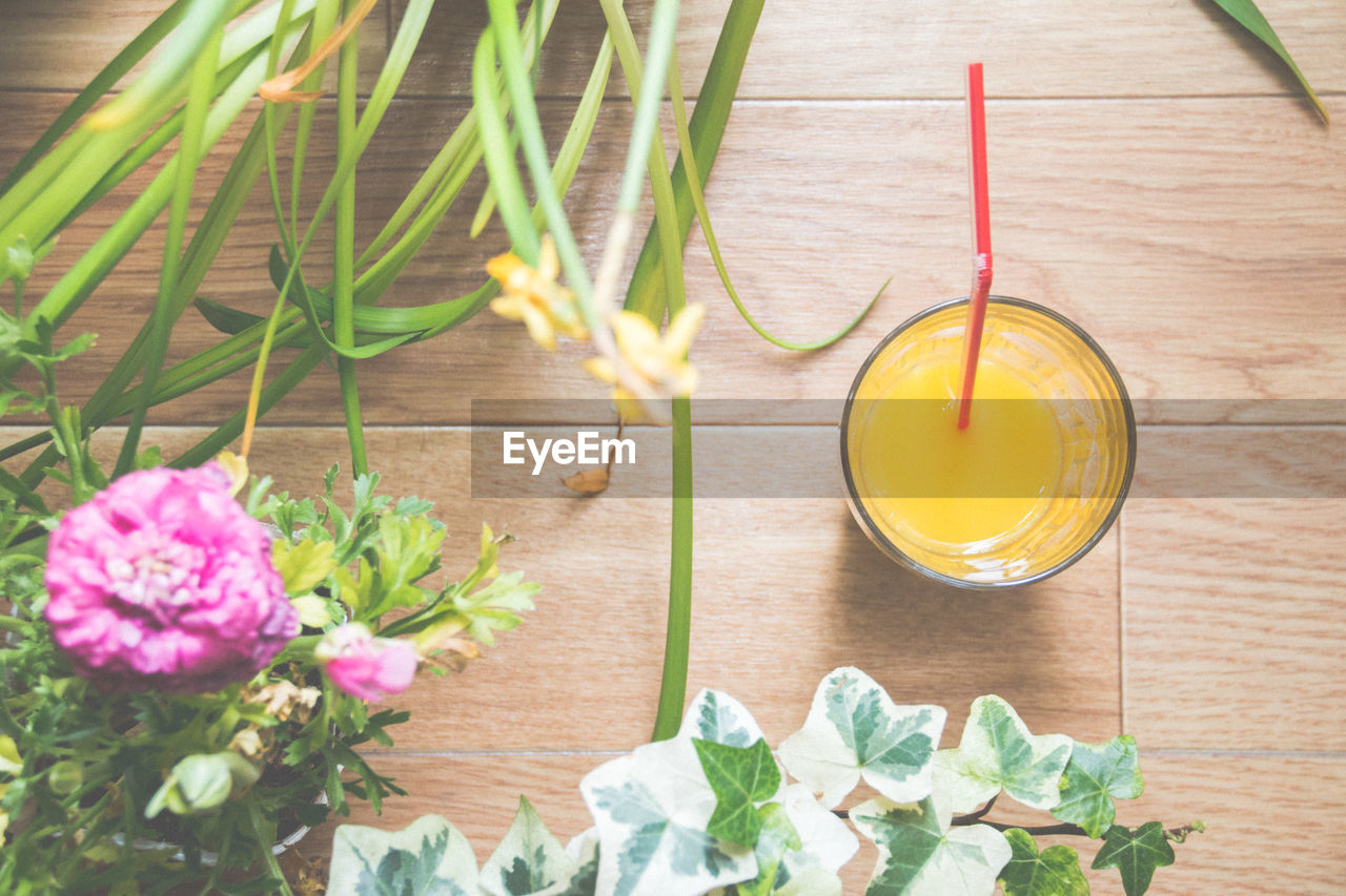 Directly Above View Of Fresh Orange Juice By Plants On Table