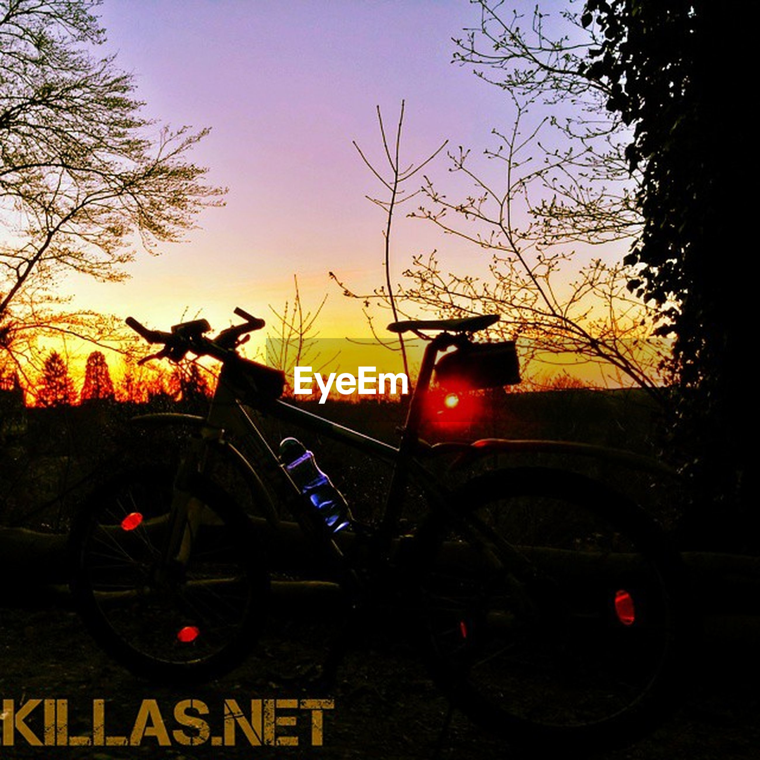 transportation, sunset, land vehicle, mode of transport, car, tree, bare tree, orange color, sky, road, yellow, illuminated, travel, clear sky, street, dusk, traffic, on the move, outdoors, text