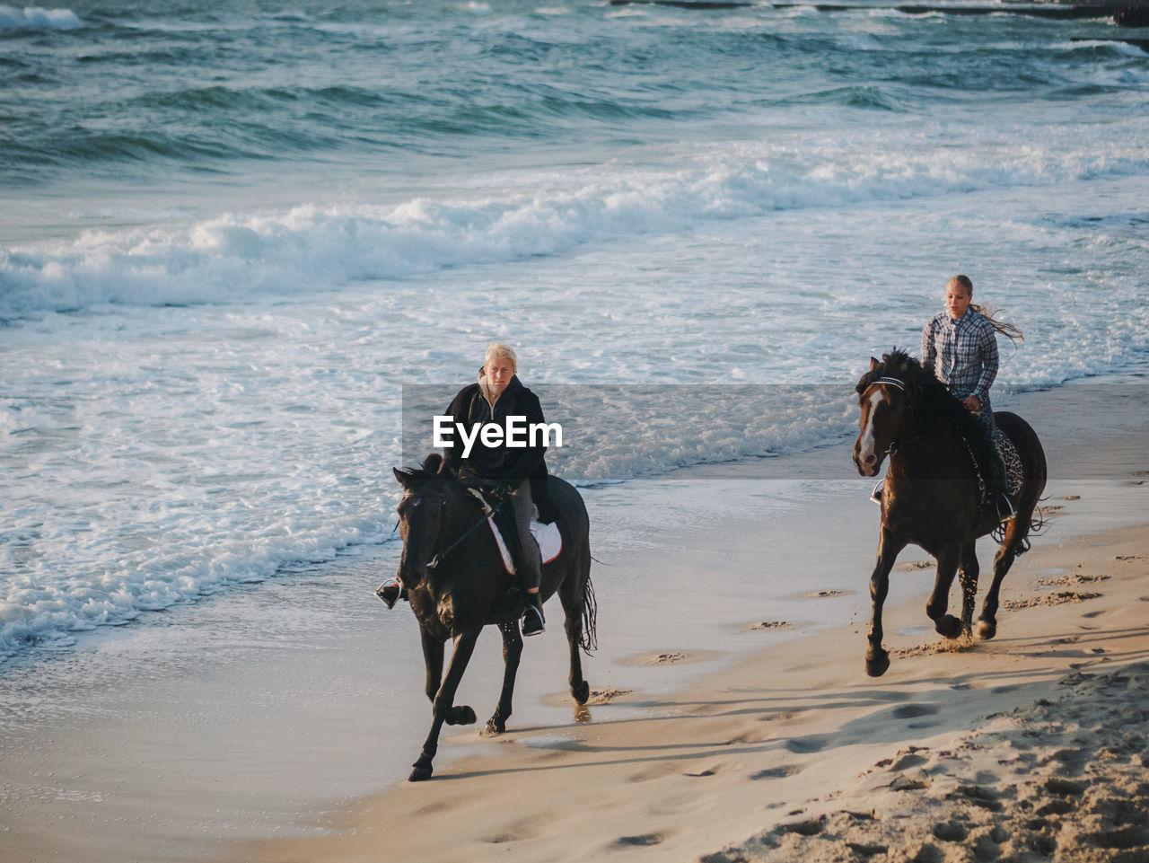 Friends horseback riding on shore at beach