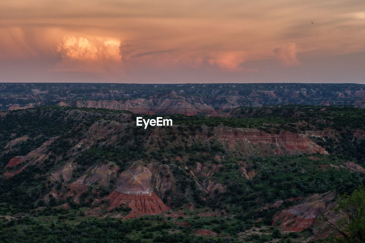 A lone hawk over the entrance to palo duro canyon, tx.