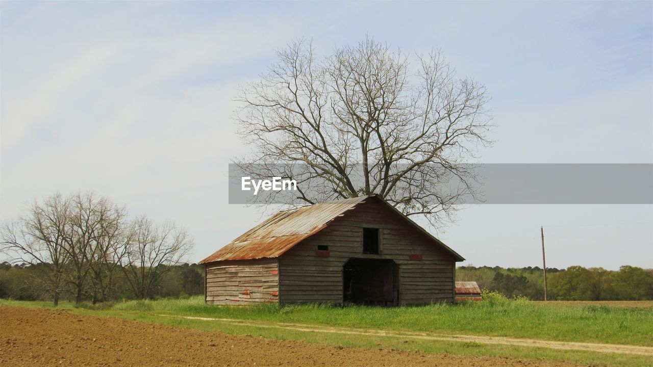 architecture, built structure, tree, sky, building exterior, building, plant, bare tree, field, house, barn, farm, land, landscape, agricultural building, no people, nature, rural scene, day, environment, outdoors, cottage, cabin