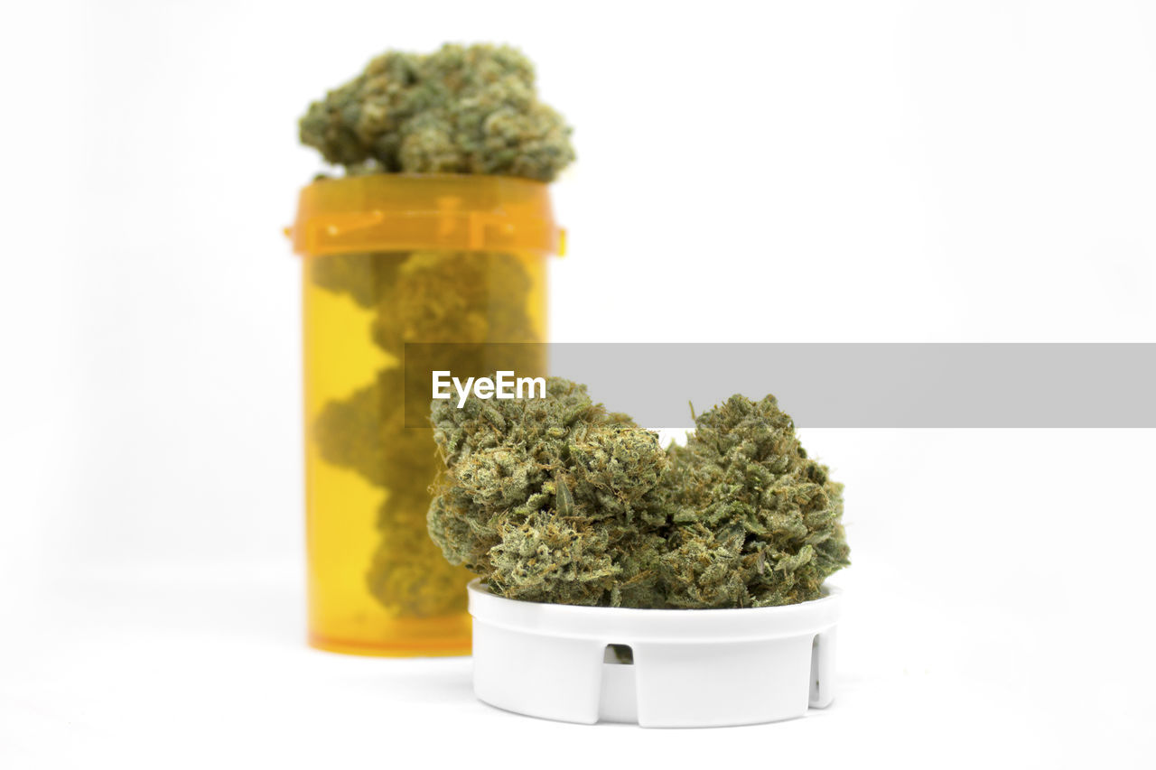 studio shot, white background, indoors, close-up, food and drink, still life, no people, food, healthcare and medicine, container, plant, focus on foreground, green color, herb, herbal medicine, freshness, medicine, jar, table, vegetable, medical cannabis