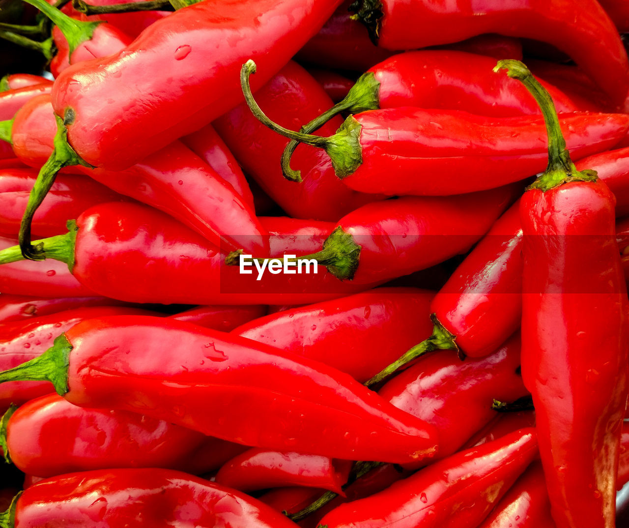 red, vegetable, food and drink, food, freshness, backgrounds, pepper, wellbeing, chili pepper, full frame, spice, healthy eating, large group of objects, red chili pepper, still life, close-up, market, no people, abundance, heap, sale, ripe, consumerism, vegetarian food