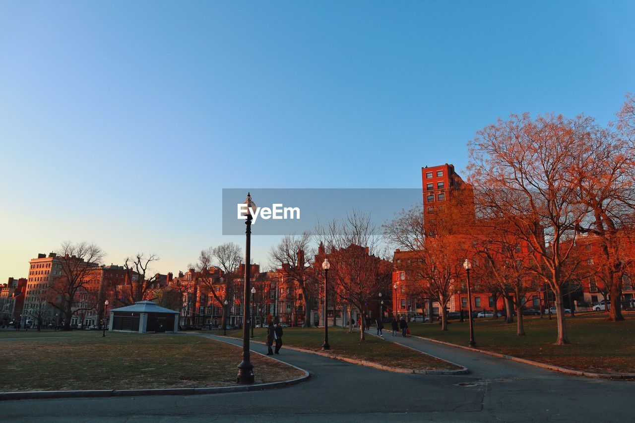 sky, building exterior, architecture, tree, built structure, plant, clear sky, nature, street, city, street light, copy space, blue, day, building, road, no people, autumn, outdoors, transportation