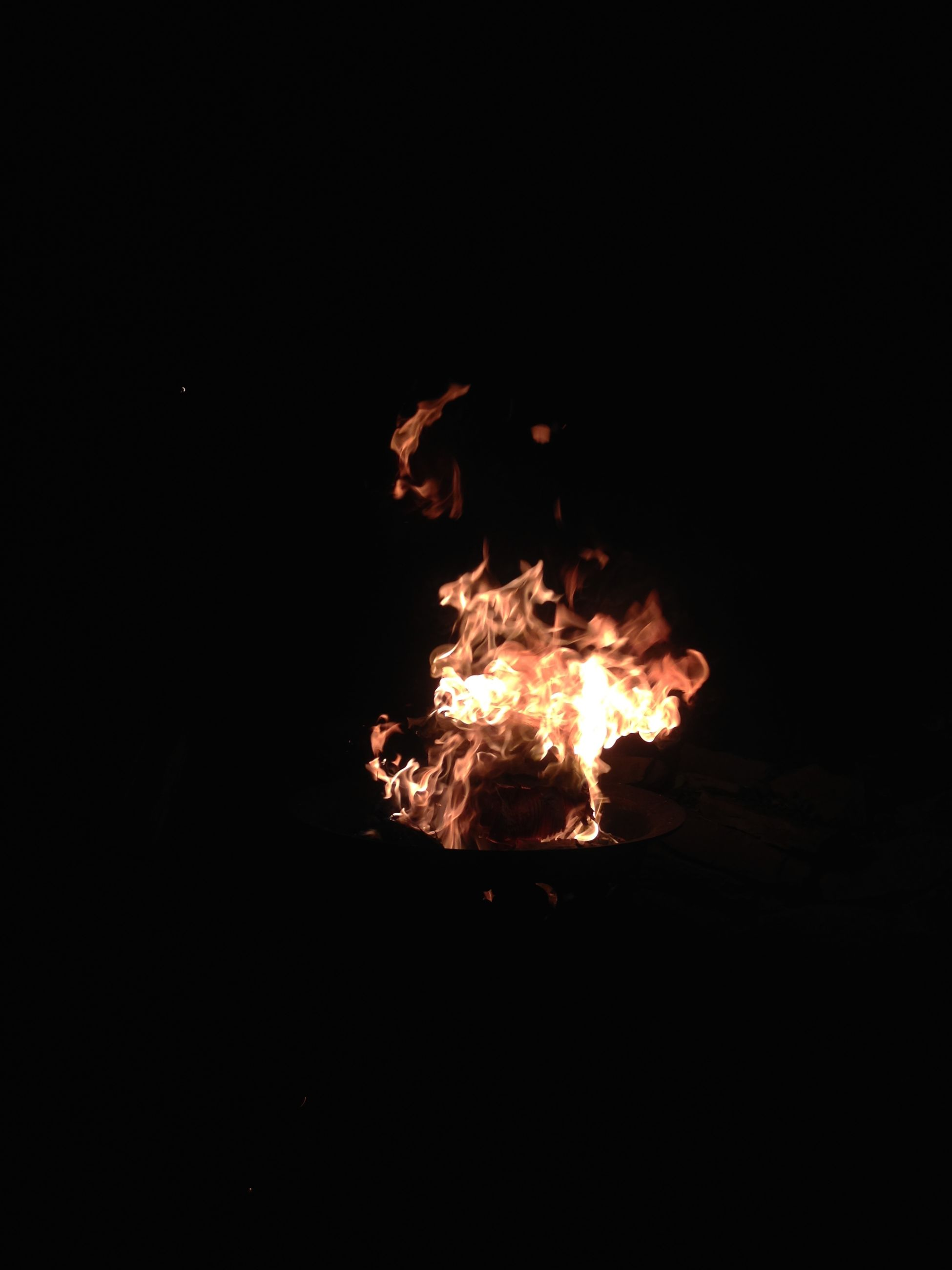 Lit bonfire in forest at night