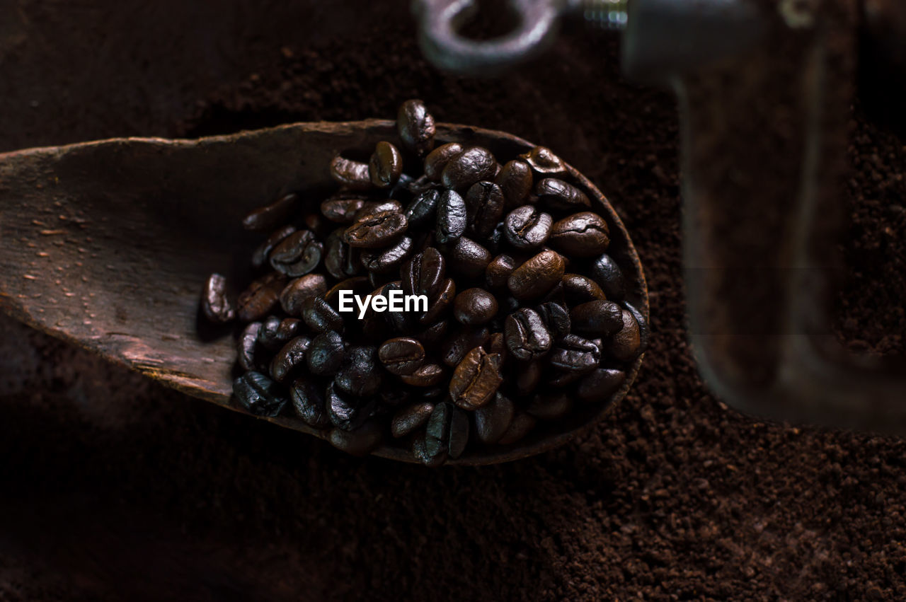 Close-Up Of Roasted Coffee Beans In Spoon
