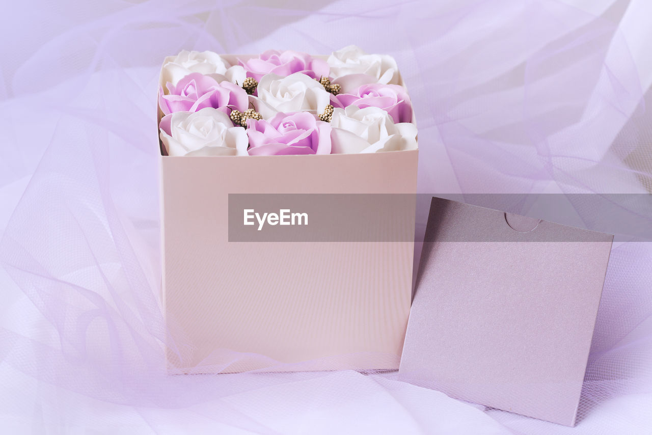 HIGH ANGLE VIEW OF PINK AND WHITE FLOWER IN BED