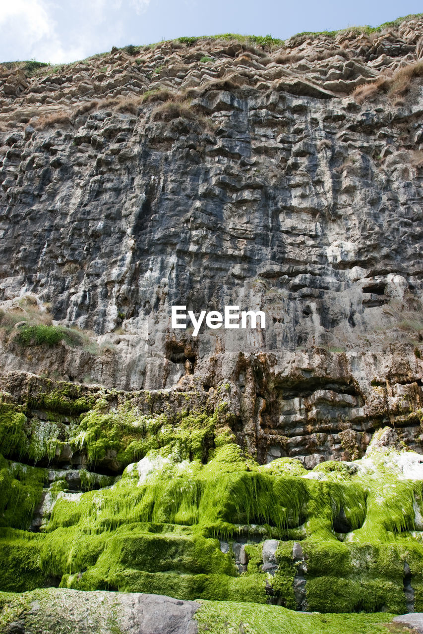 rock - object, rough, day, green color, no people, nature, outdoors, mountain, scenics, tree, beauty in nature, close-up, rock face, sky