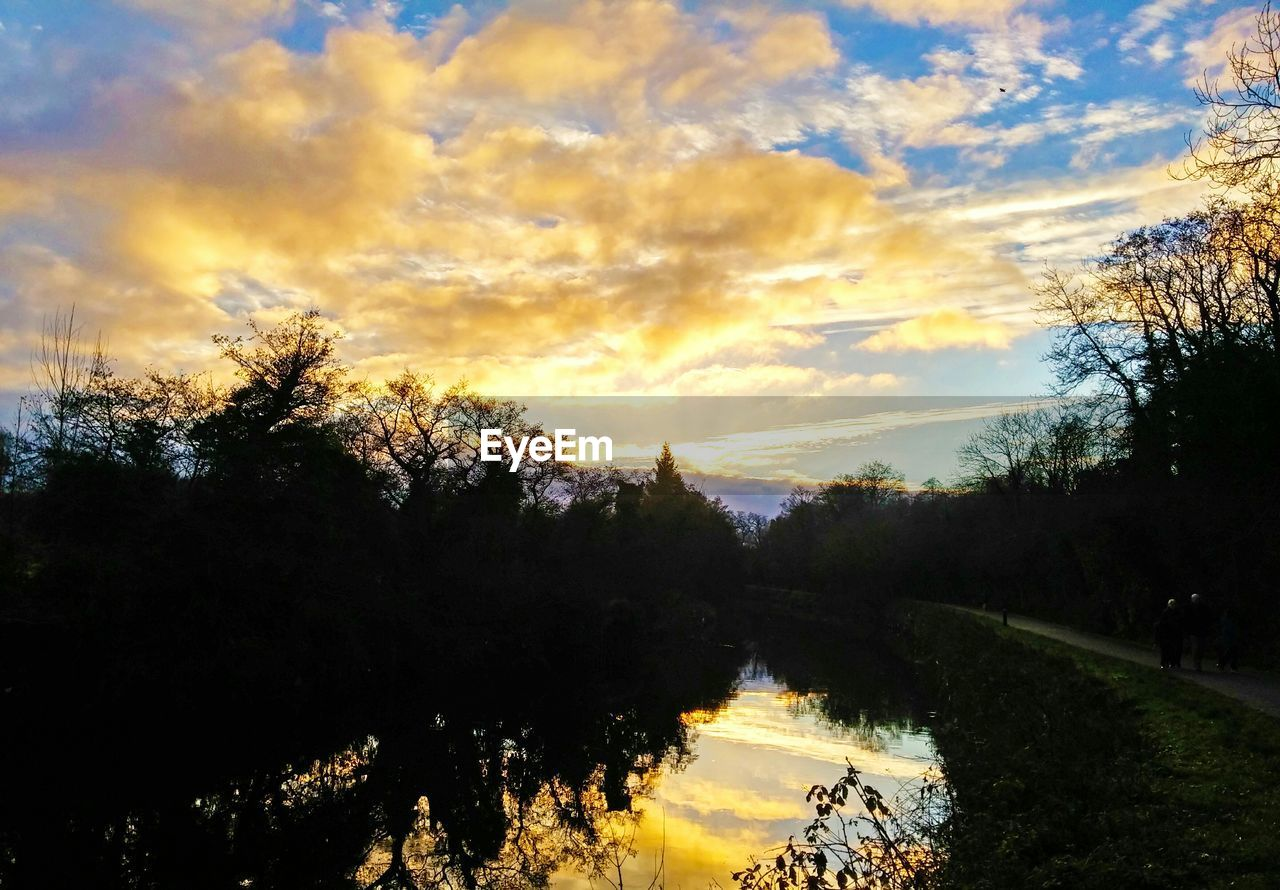 tree, tranquil scene, nature, sky, tranquility, sunset, scenics, beauty in nature, silhouette, cloud - sky, no people, landscape, outdoors, growth, water, day