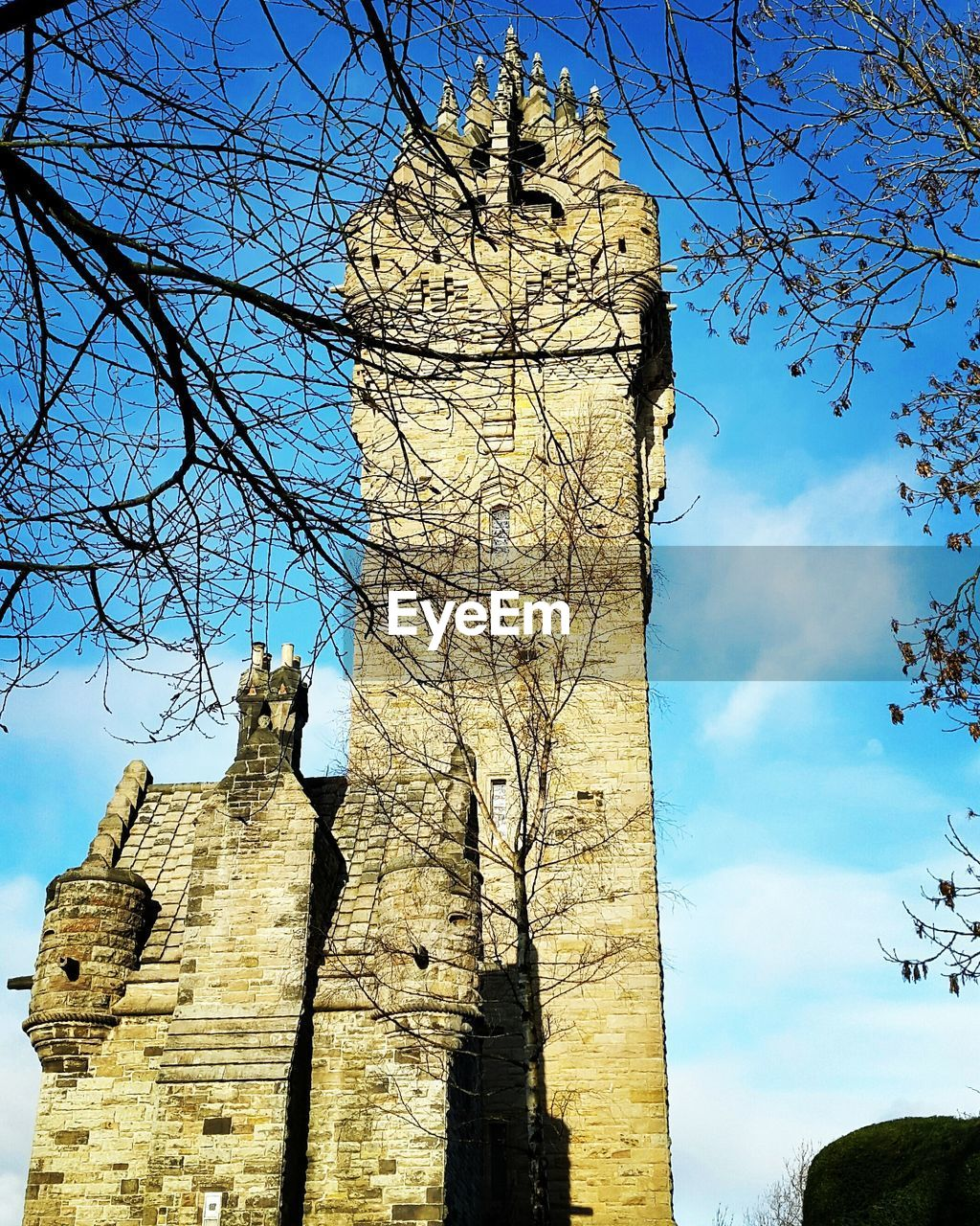 architecture, low angle view, built structure, history, old ruin, building exterior, bare tree, day, sky, the past, tree, ancient, place of worship, religion, spirituality, ancient civilization, no people, damaged, branch, outdoors, travel destinations, sunlight