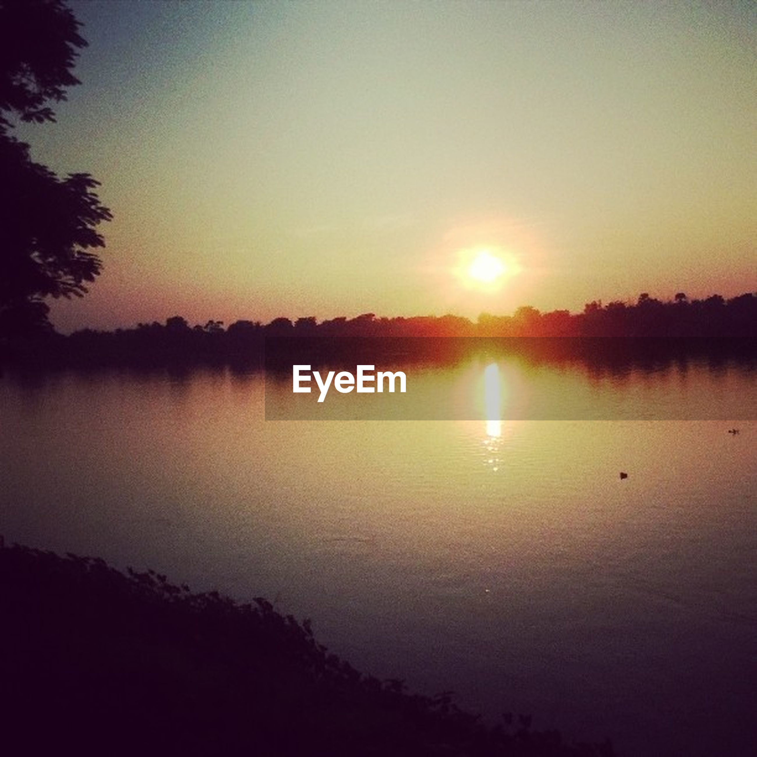 sunset, tranquil scene, sun, silhouette, tranquility, scenics, water, reflection, beauty in nature, lake, tree, nature, idyllic, sky, orange color, clear sky, sunlight, river, outdoors, non-urban scene