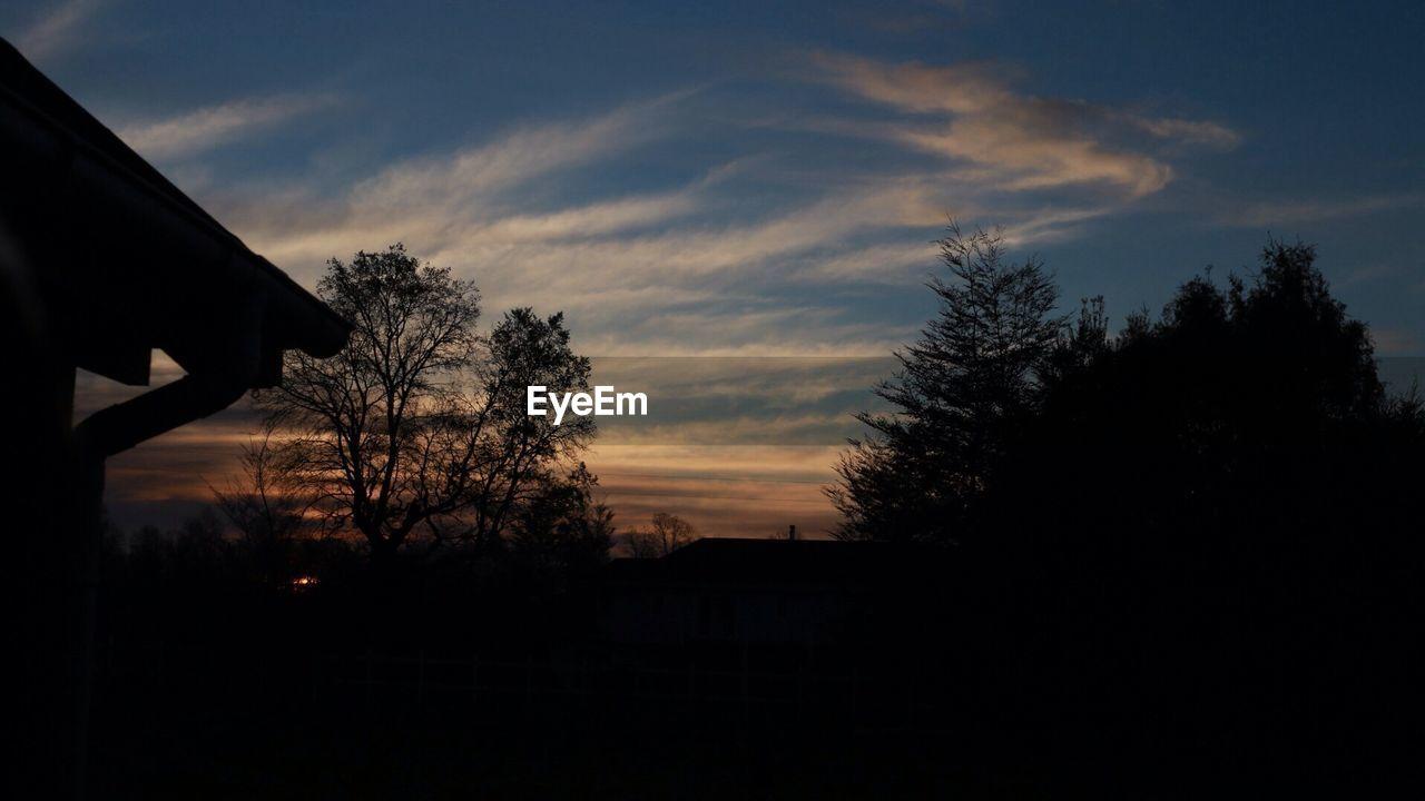 Silhouette treetops against sky at dusk