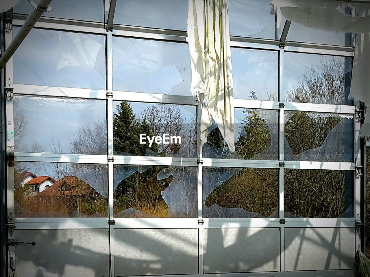 glass - material, window, growth, architecture, indoors, plant, tree, built structure, no people, day, nature, sky, greenhouse, building exterior