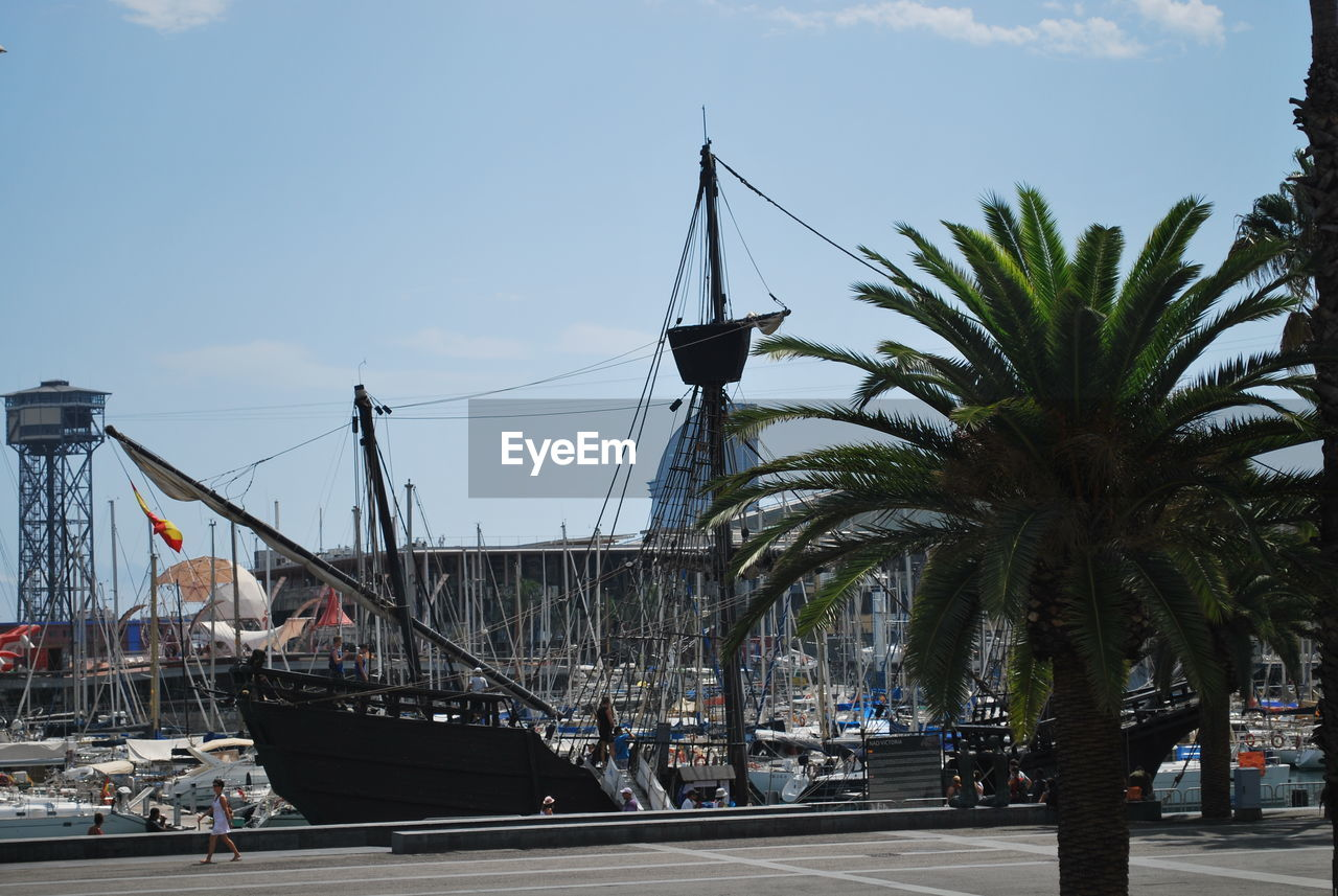 transportation, palm tree, sky, architecture, built structure, day, outdoors, city, nautical vessel, water, no people, tree