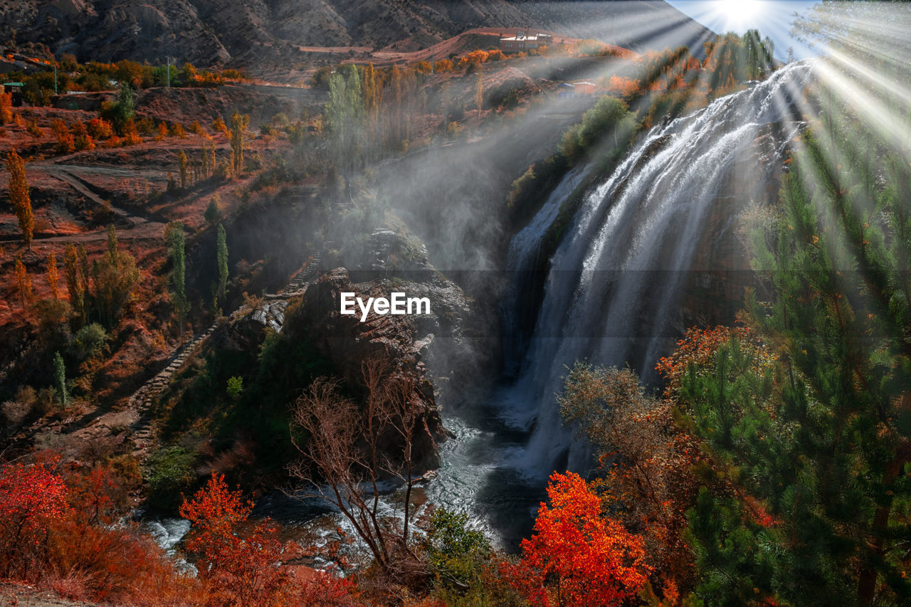 Scenic view of waterfall in forest. tortum waterfall in turkey.