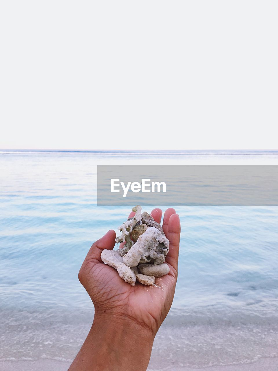 sea, human hand, hand, water, sky, horizon, beach, human body part, horizon over water, one person, holding, unrecognizable person, land, personal perspective, real people, clear sky, nature, human finger, finger, body part, outdoors