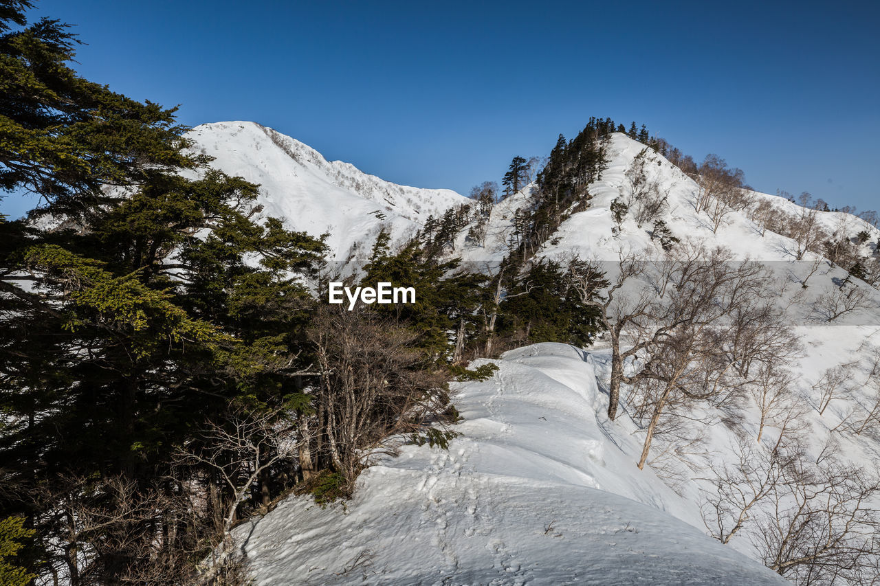 snow, cold temperature, winter, mountain, sky, scenics - nature, beauty in nature, plant, tree, tranquil scene, tranquility, nature, white color, day, non-urban scene, no people, clear sky, mountain range, environment, outdoors, snowcapped mountain, mountain peak