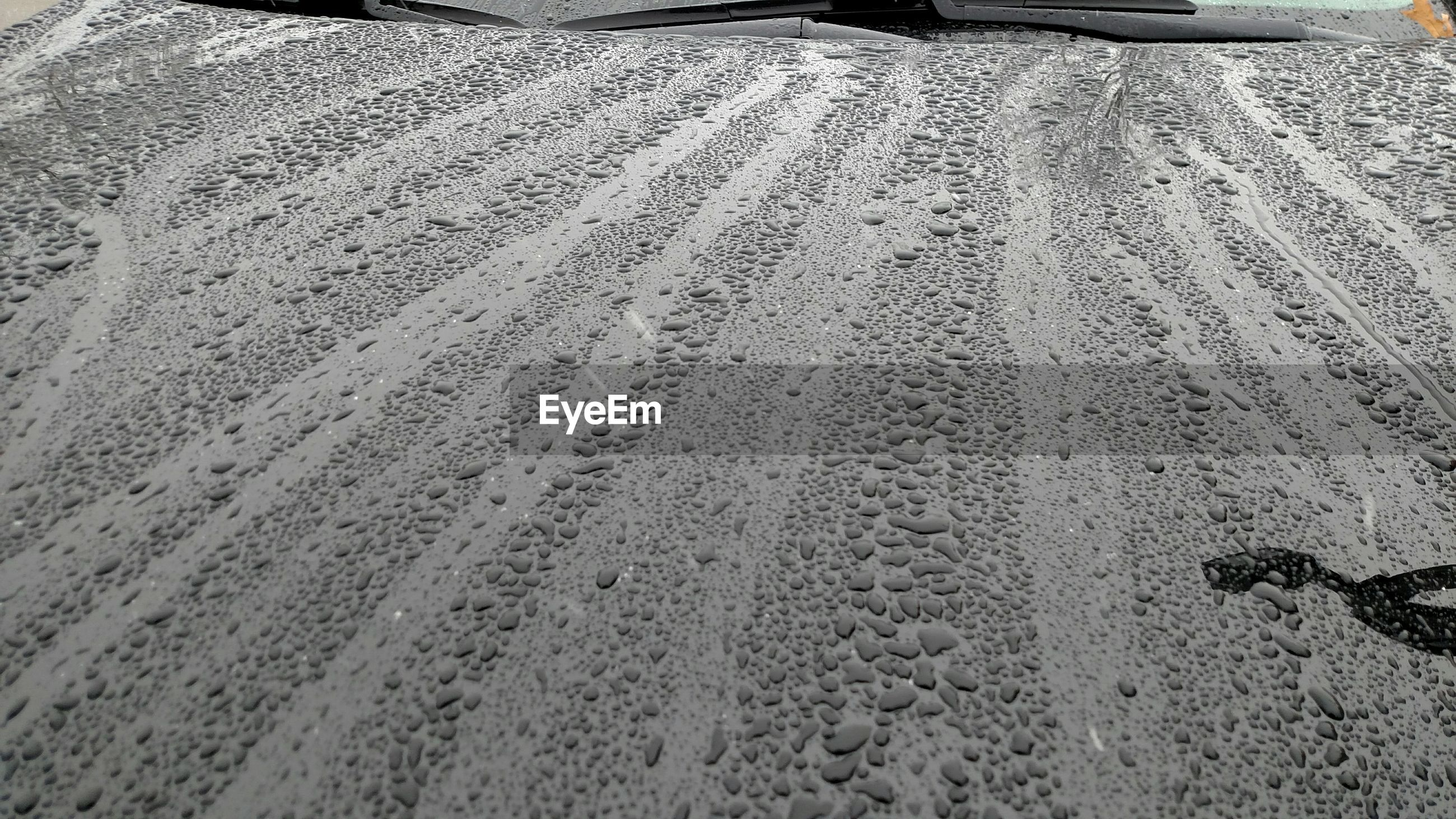 Close-up of water drops on car bonnet
