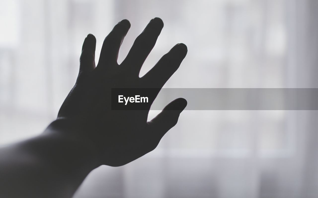 Close-up of hand against window