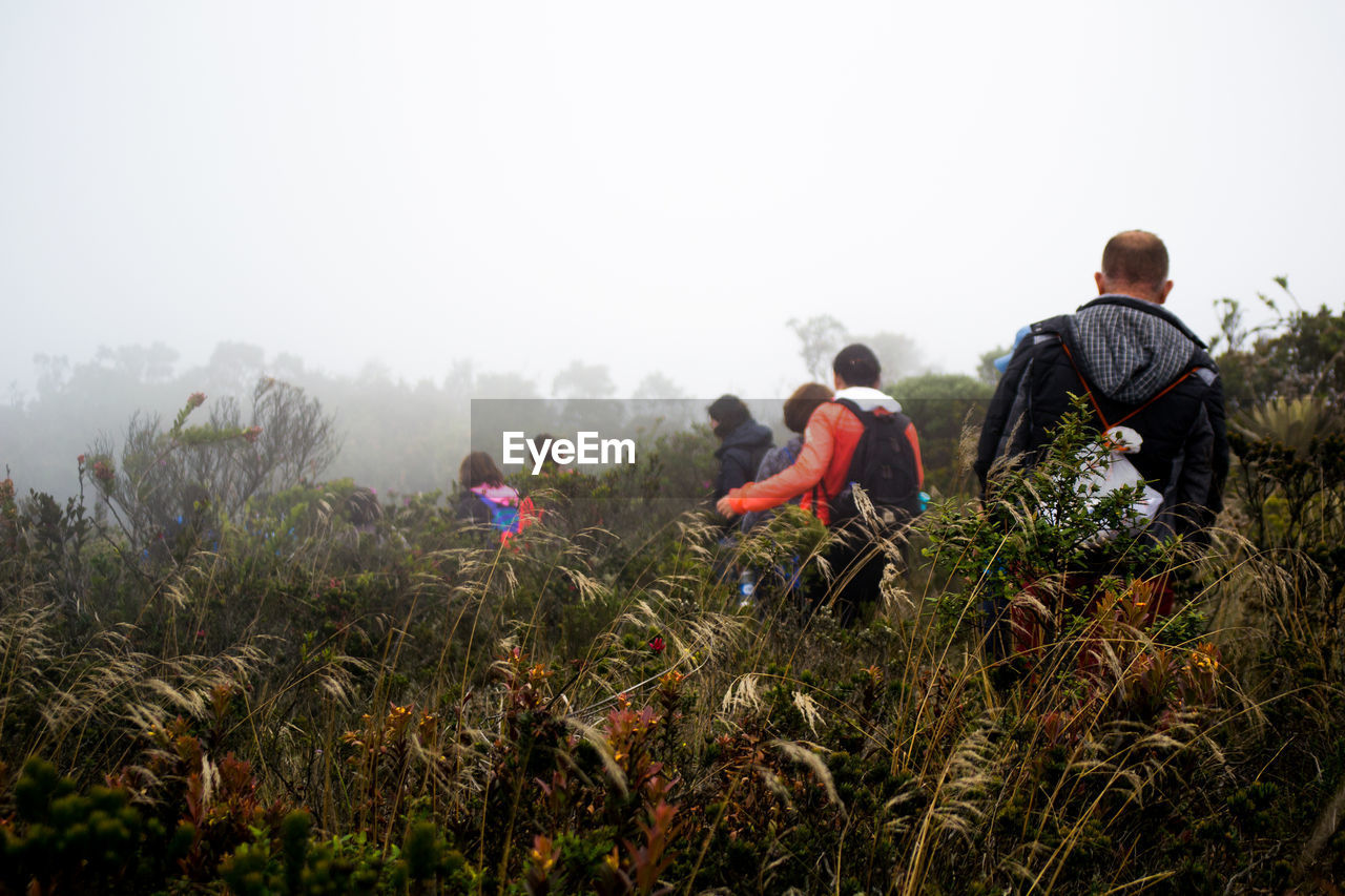 Rear View Of People Walking On Country Landscape