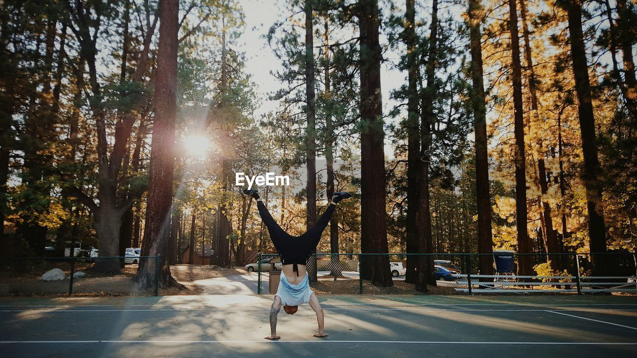 tree, plant, nature, one person, sunlight, full length, real people, lifestyles, motion, day, lens flare, sport, leisure activity, women, transportation, sunbeam, adult, outdoors, healthy lifestyle, human arm