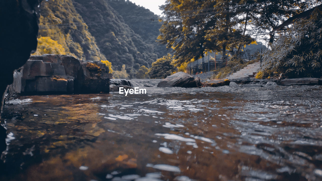 water, rock, nature, beauty in nature, solid, tree, rock - object, day, scenics - nature, tranquility, no people, outdoors, waterfront, plant, river, flowing water, land, mountain, environment, surface level, flowing