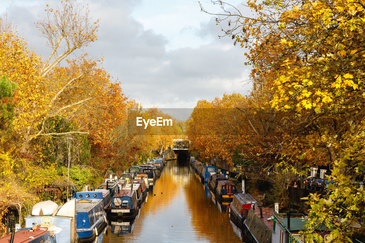 plant, autumn, tree, change, nature, water, orange color, day, transportation, growth, sky, beauty in nature, no people, the way forward, yellow, cloud - sky, bridge, mode of transportation, scenics - nature, outdoors, diminishing perspective, canal, autumn collection