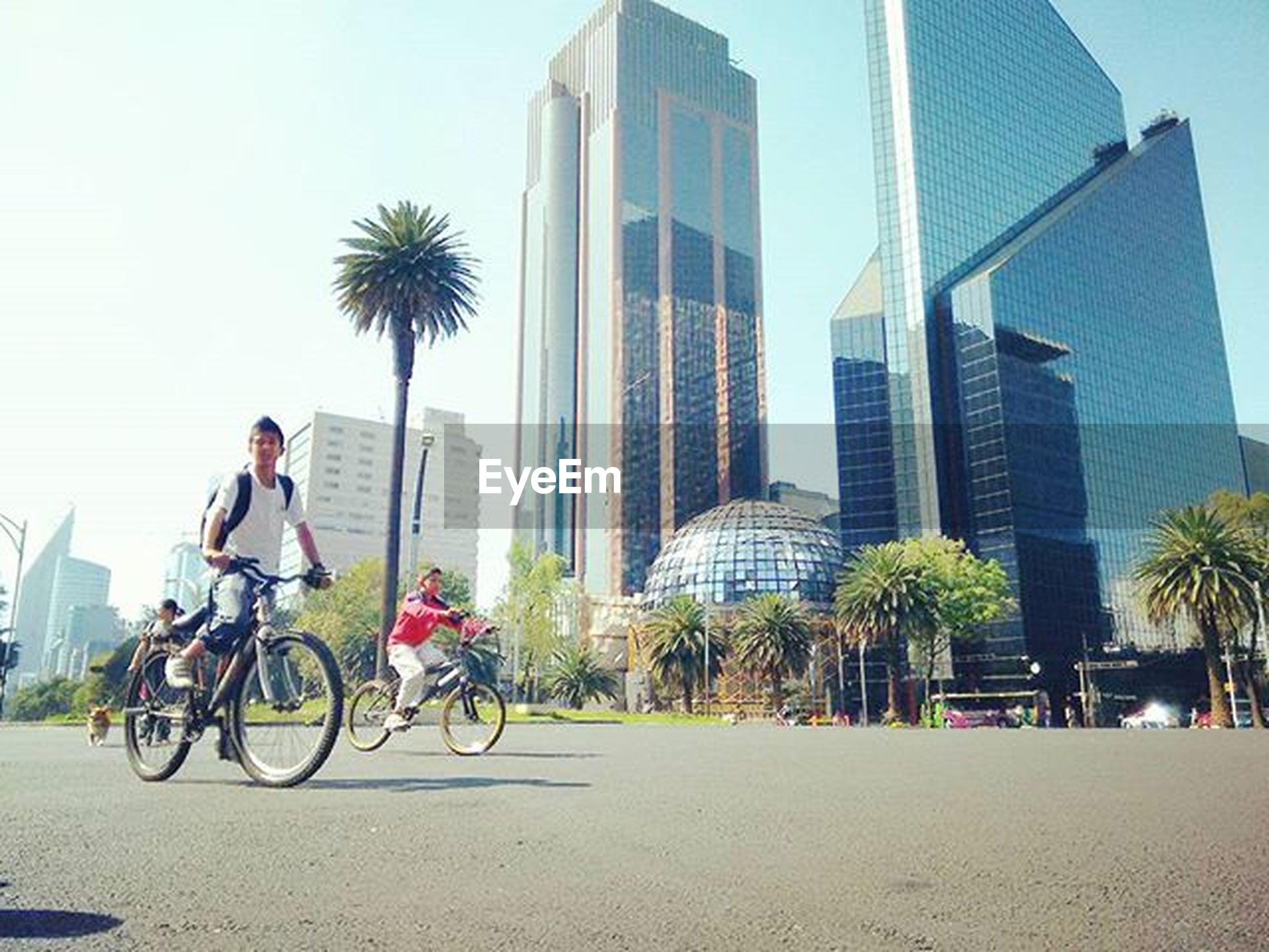 building exterior, architecture, built structure, city, bicycle, palm tree, lifestyles, transportation, land vehicle, leisure activity, tree, men, mode of transport, full length, city life, modern, skyscraper, office building