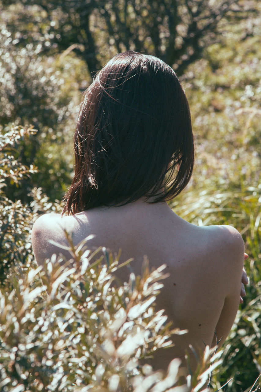 REAR VIEW OF WOMAN SITTING ON PLANT