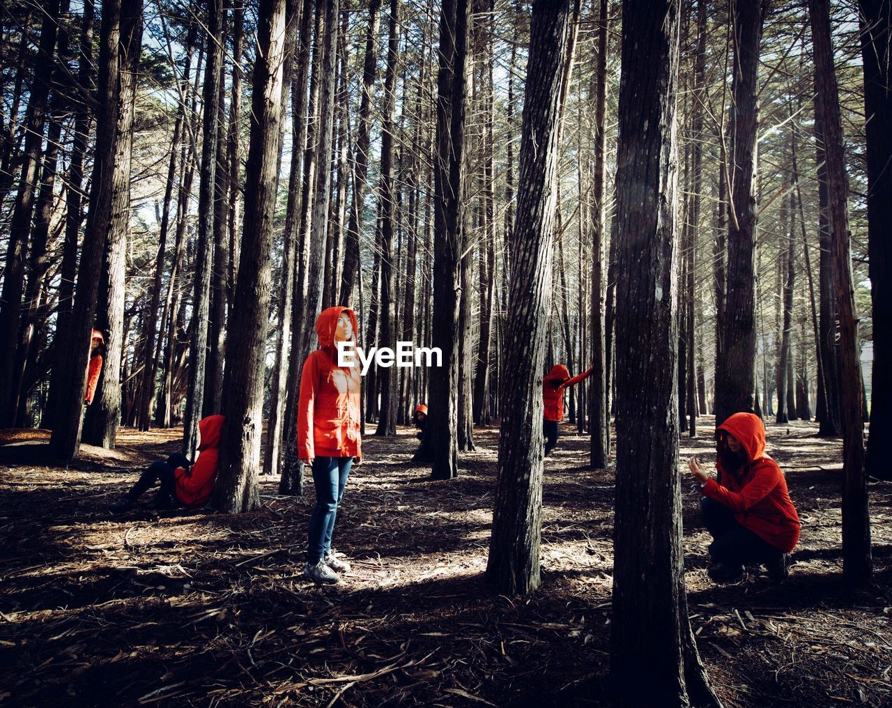 Multiple image of women in forest