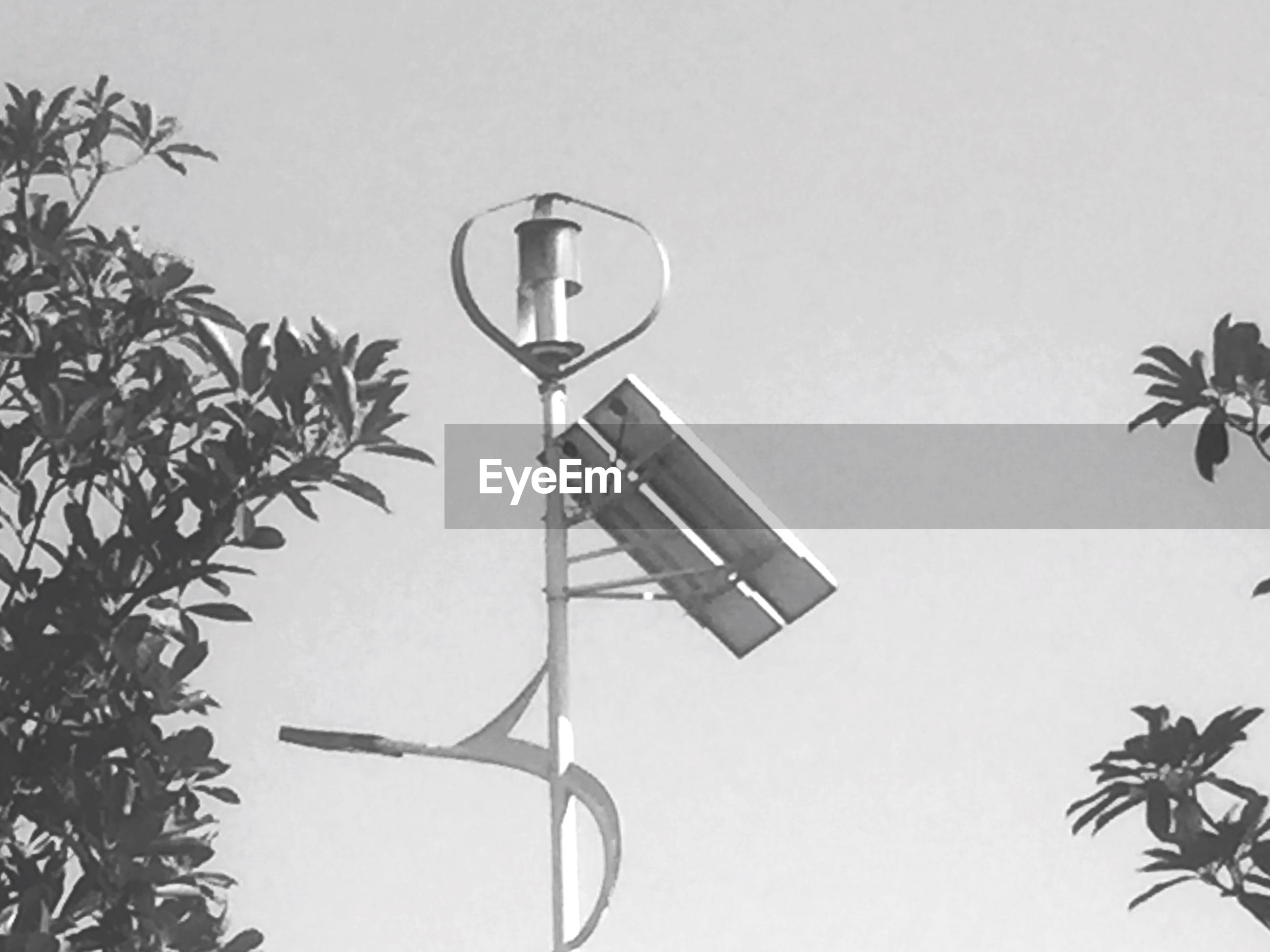 low angle view, clear sky, copy space, street light, lighting equipment, tree, no people, communication, day, wall - building feature, hanging, outdoors, pole, wall, lamp post, high section, close-up, art and craft, cross, basketball hoop