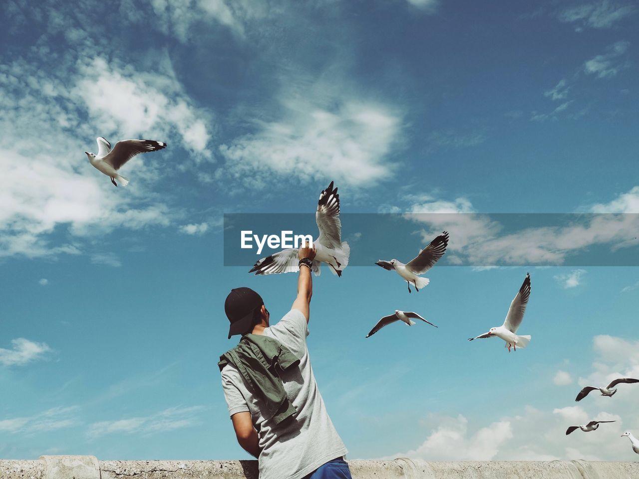 Rear View Of Man Standing Below Seagulls Flying In Blue Sky
