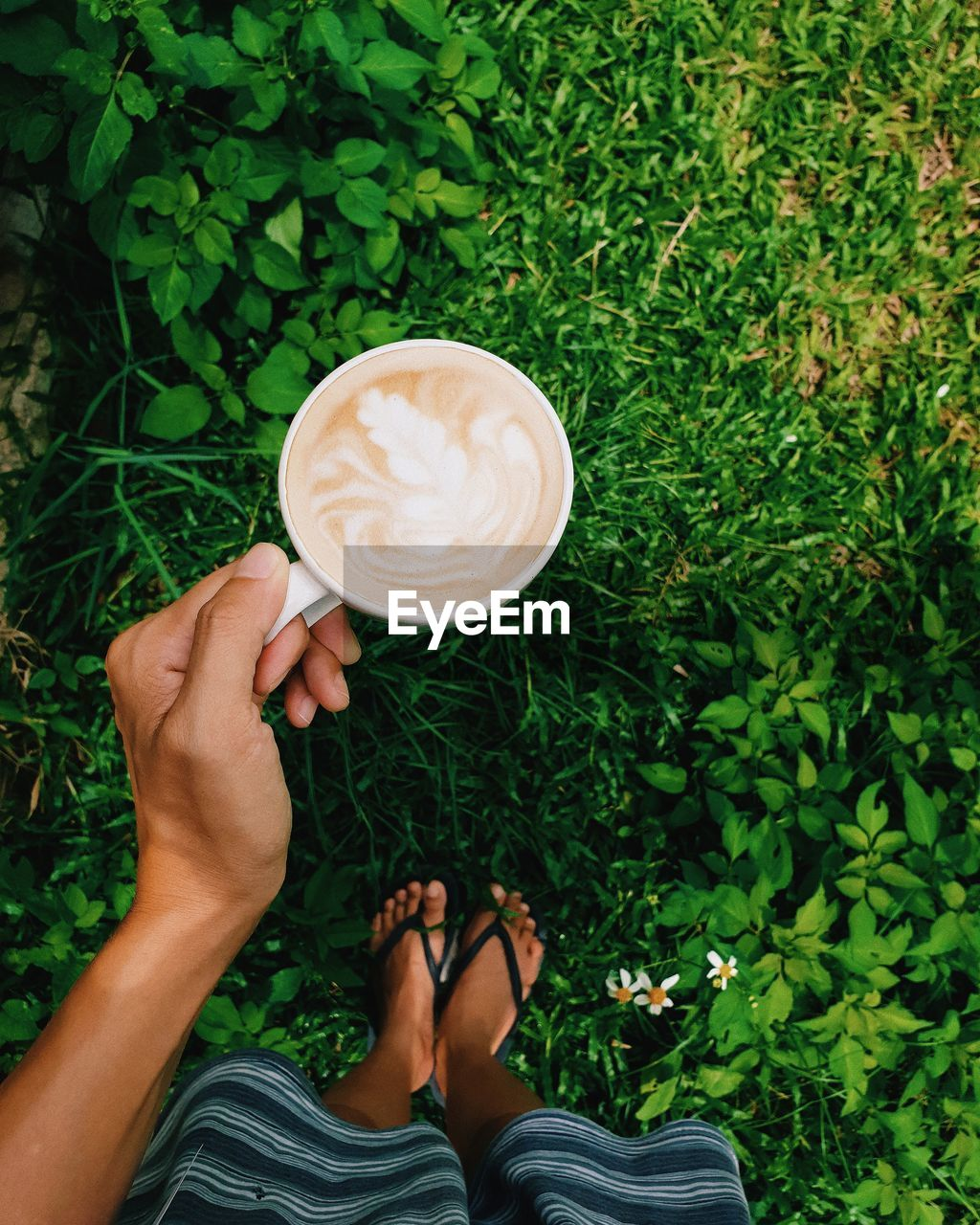 one person, real people, cup, holding, plant, drink, coffee - drink, coffee cup, refreshment, coffee, mug, food and drink, lifestyles, human hand, freshness, frothy drink, froth art, low section, nature, hand, hot drink, outdoors, latte