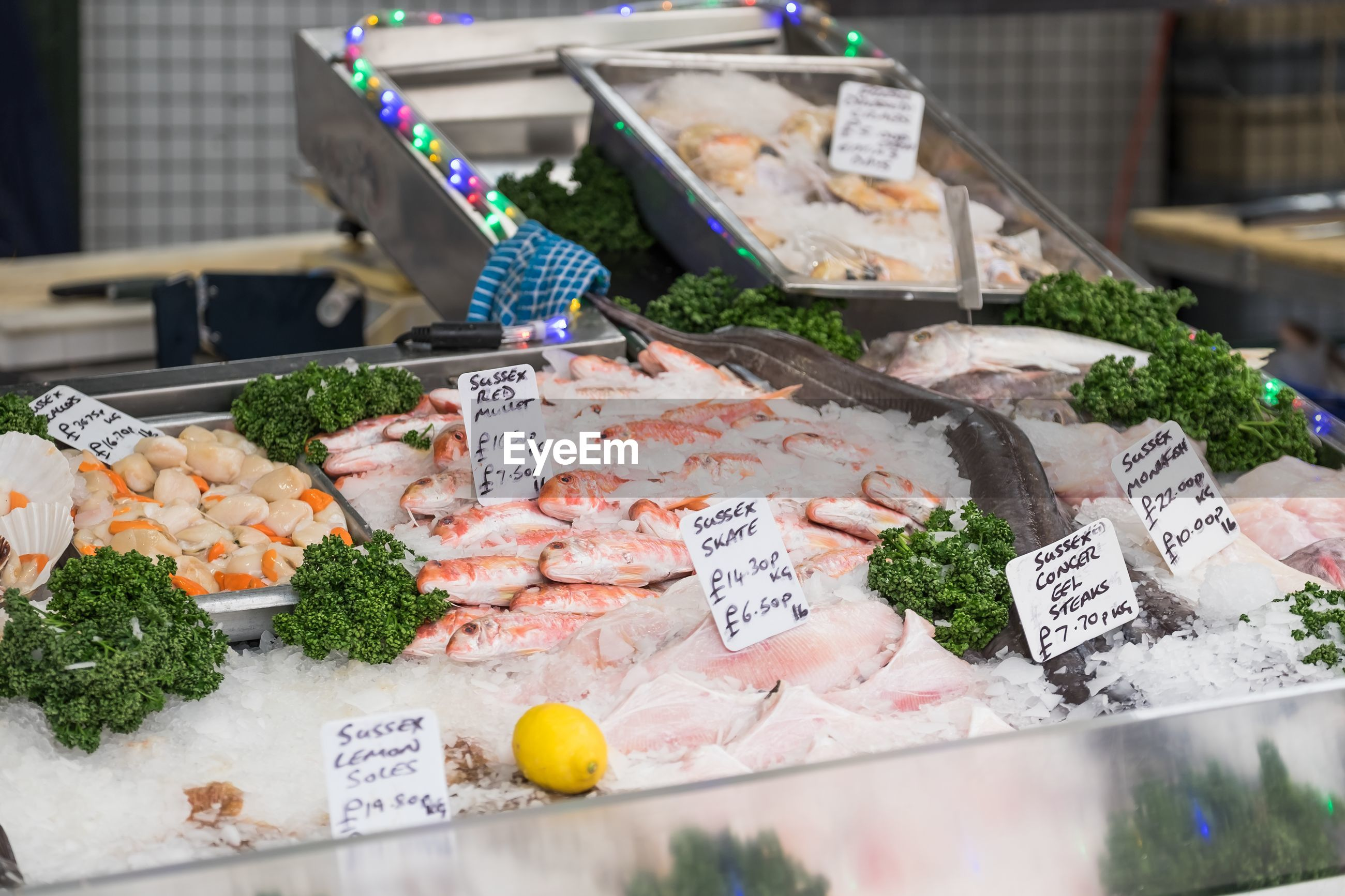 High angle view of fresh seafood with labels at market stall