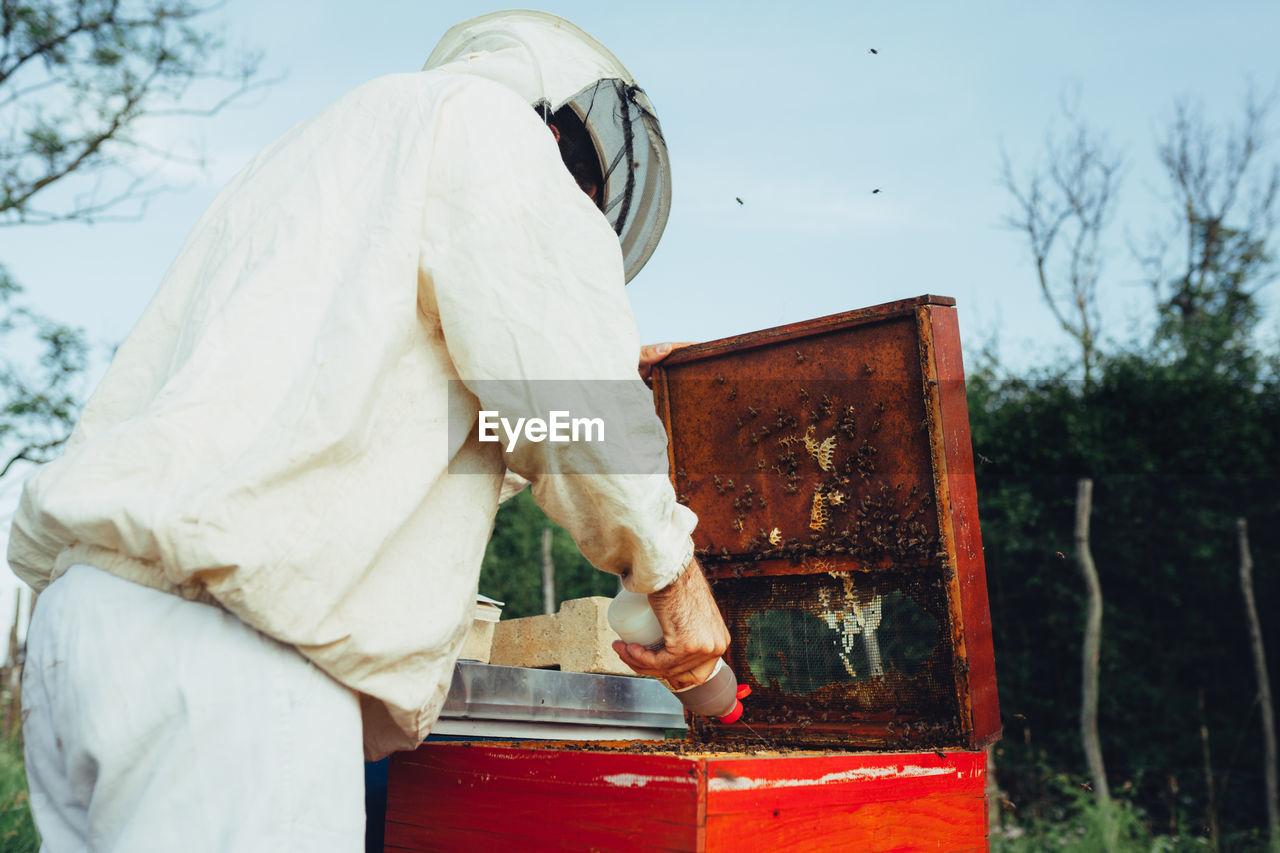 Side view of beekeeper examining beehive on land